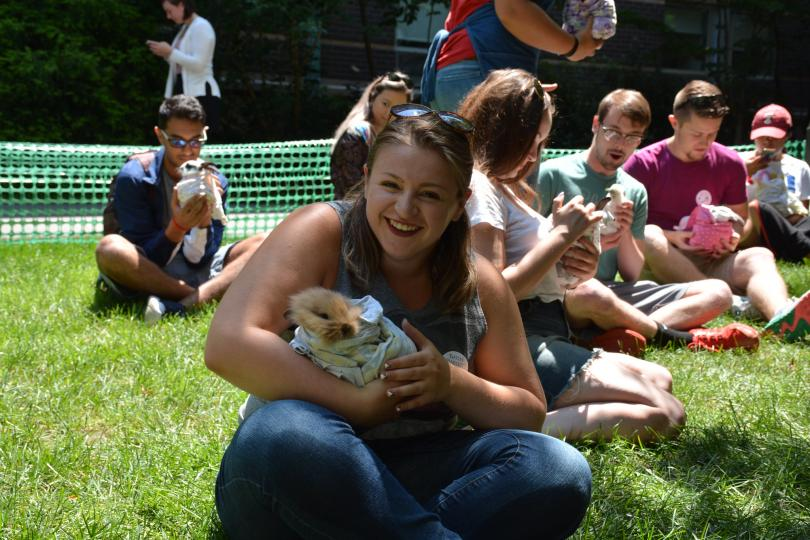 Students holding barn animals on the grass